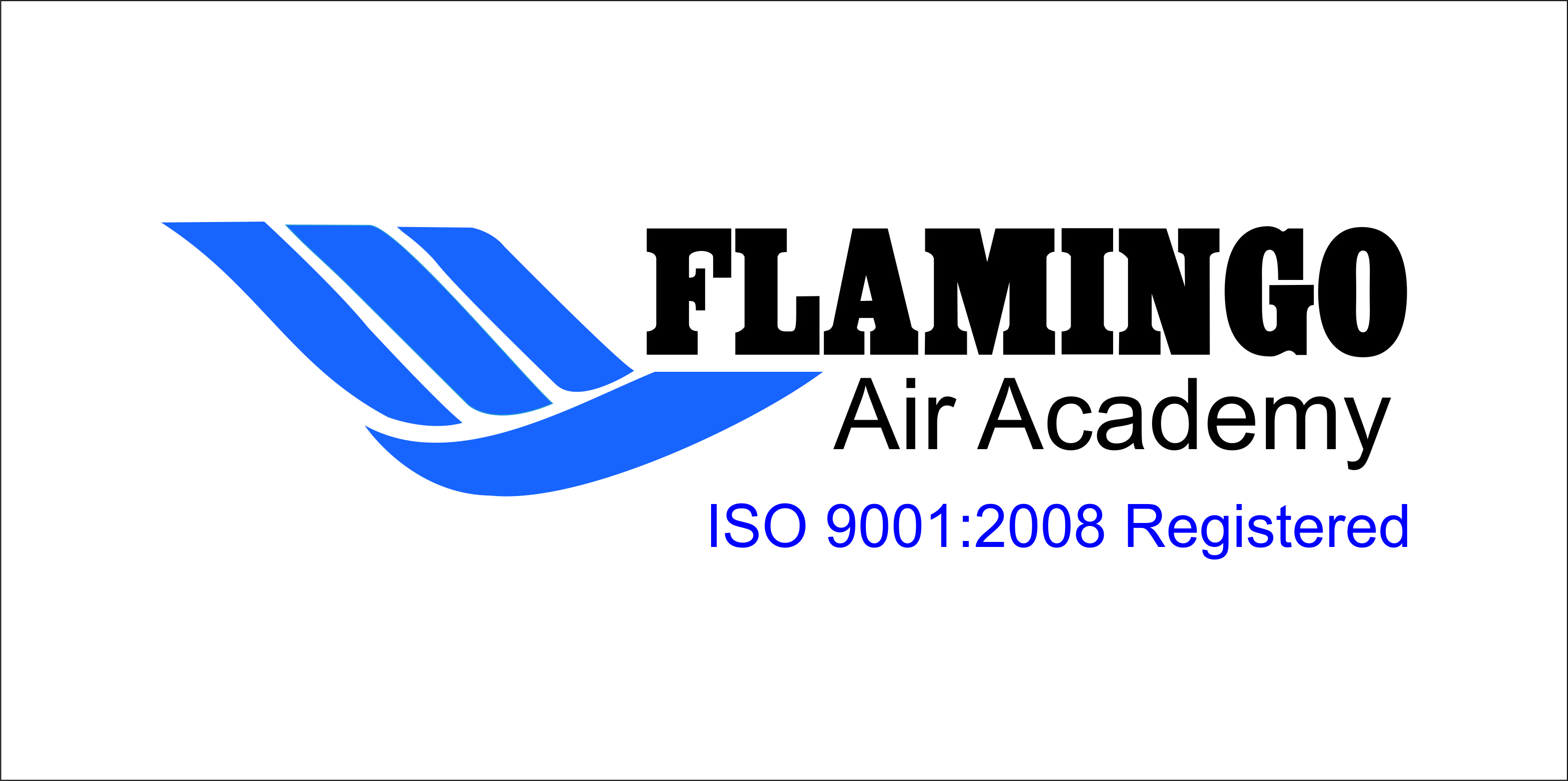 Flamingo Air Academy